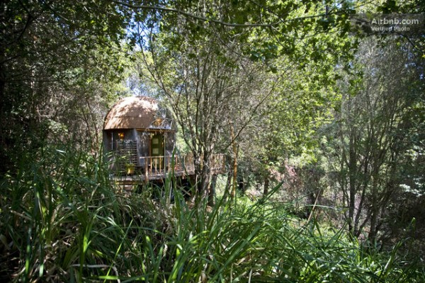 mushroom-dome-micro-cabin-vacation-rental-033
