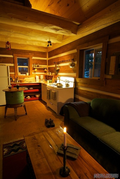 320 Sq Ft Post Amp Beam Cabin In The Woods For Sale Tiny
