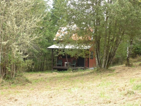 tiny-cabin-on-5-acres-for-sale-02