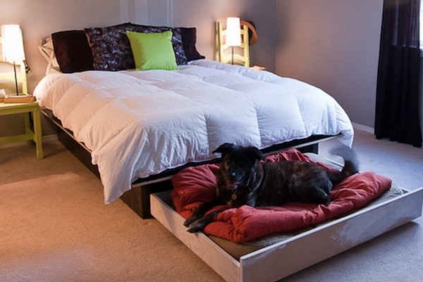 Hidden Slide Out Bed Under Your Bed For Your Dog Tiny