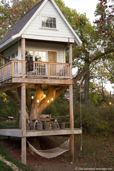Tiny House On A Tree And Stilts Best Treehouse Ever